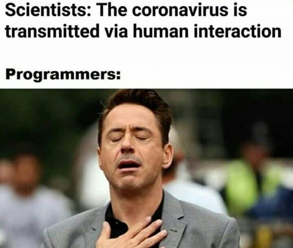 Coronavirus vs Programmer