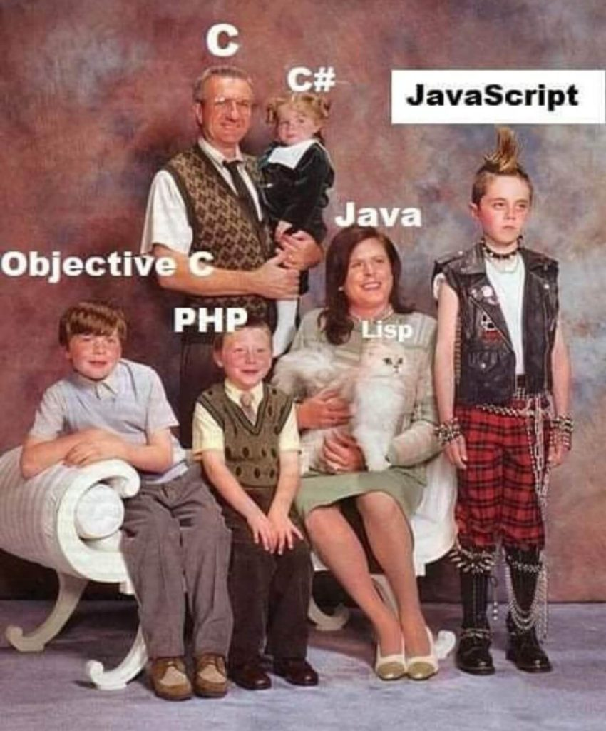 Programming Memes JavaScript vs Other Languages