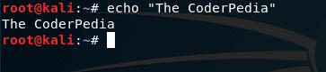 echo Basic Linux Command