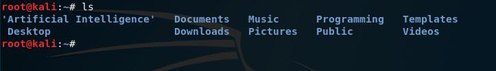 ls Basic Linux Command