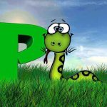 Why is Python such a popular Programming Language?